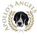 Apollos Angels