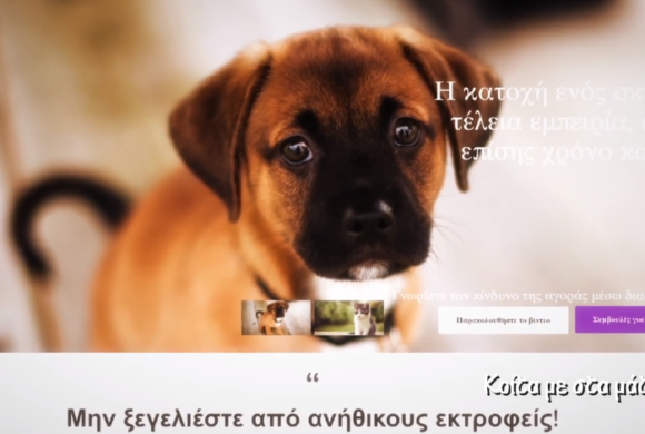 CYPAAG (Cyprus Pet Advertising Advisory Group) - Κοίτα με στα μάτια