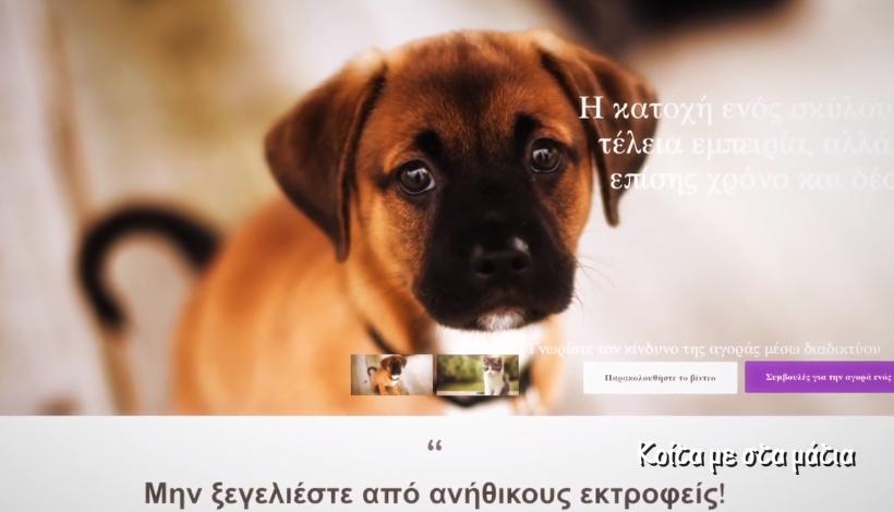 CYPAAG (Cyprus Pet Advertising Advisory Group) - Κοίτα με στα μάτια