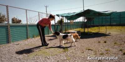 2nd Chance Dogs Center/ training and socialization Episode 3